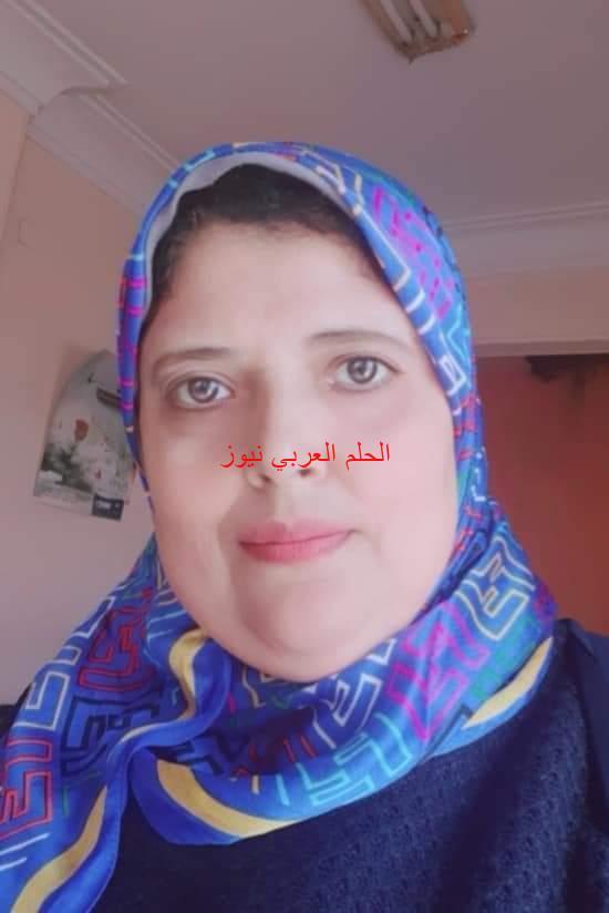 التنمية المتشعبة مشروع مستقبل مصر ( محور الضبعة)