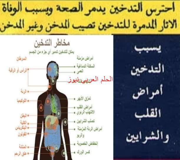 سؤال للرئيس والحكومة وجميع الأجهزة الأمنية بمصر