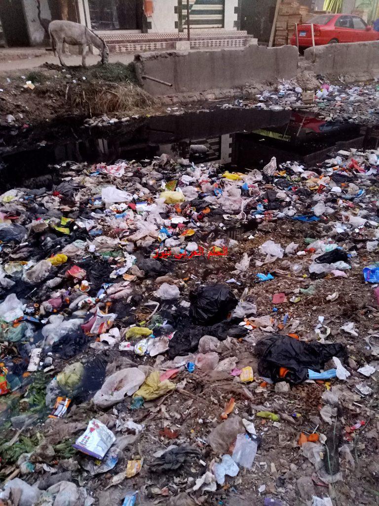 محافظة الفيوم تنذر بكارثة بيئية ووباء مهلك