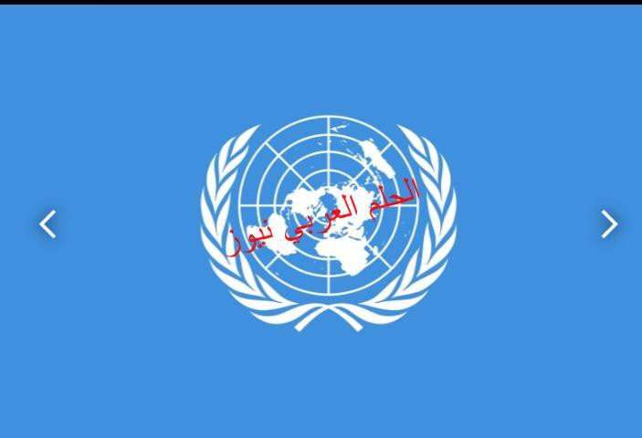 المنظمة البحرية الدولية: نتابع حادثة السفينة الجانحة في قناة السويس بقلم ليلي حسين