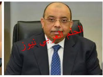 وزير التنمية المحلية يصدر حركة تنقلات محدودة تضم 7 قيادة محلية بقلم ليلي حسين