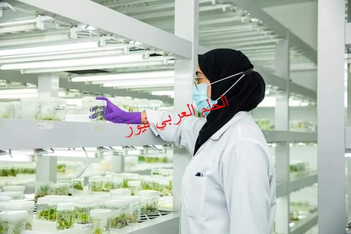 جامعة الإمارات تؤكد ريادتها في تحقيق الأمن الغذائي للإمارات