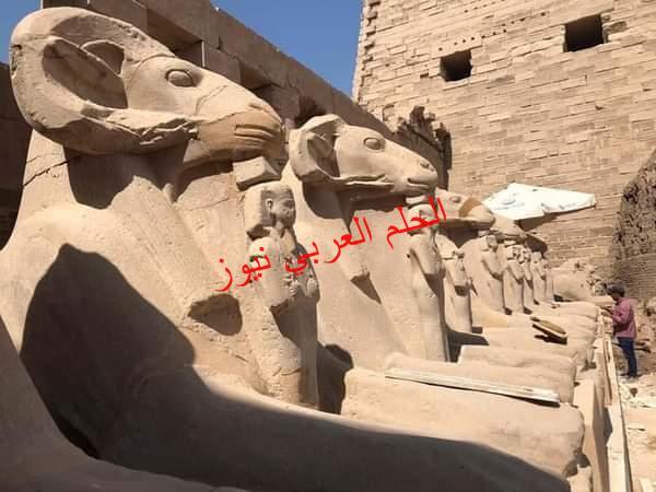 الحكم في دعوى وقف نقل تماثيل الكباش من الكرنك لميدان التحرير