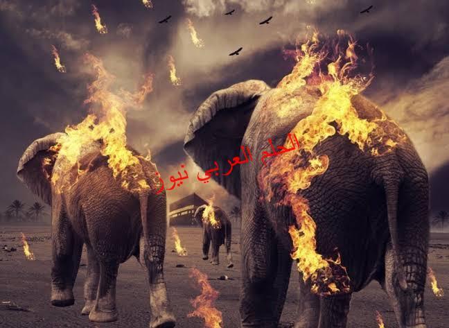 أثيوبيا وسد الفيل