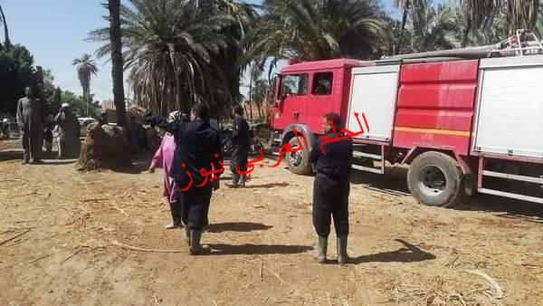 الحماية المدنية تسيطر على حريق هائل بكرم نخيل بقرية الدقيرة بمدينة إسنا جنوب الأقصر