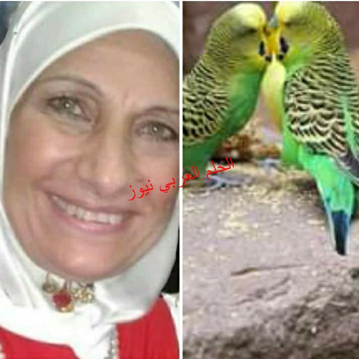 صباح زقزقة العصافير ليلي حسين