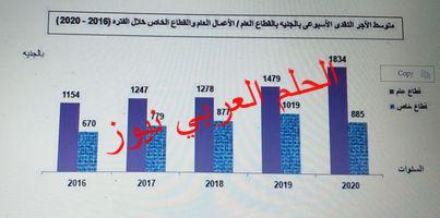 24 % زيادة فى متوسط الأجر الأسبوعي للعاملين بالقطاع العام عام 2020 بقلم ليلي حسين