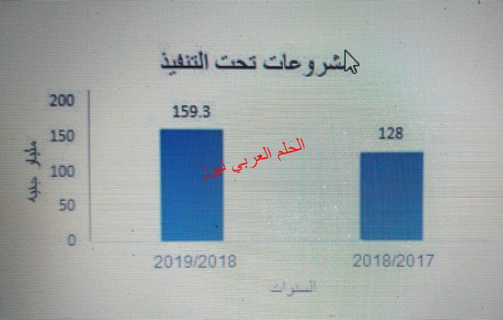37٪ زيادة قيمة إيرادات النشاط الجاري للهيئات الاقتصادية عام2018/ 2019 بقلم ليلي حسين